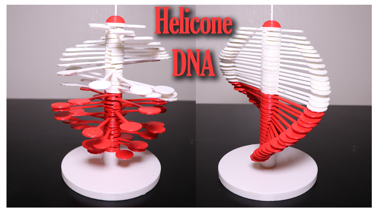 Helicone DNA